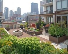ADACare Strata Roof Top Garden 2